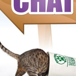 Univers_Chat_p1